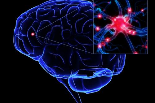 Nguyên nhân và điều trị rối loạn thần kinh thực vật như thế nào?