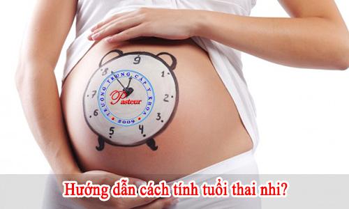 huong-dan-cach-tinh-tuoi-thai-nhi