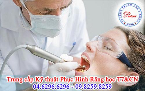 Trung cấp kỹ thuật phục hình răng có thể học Thứ 7, Chủ nhật